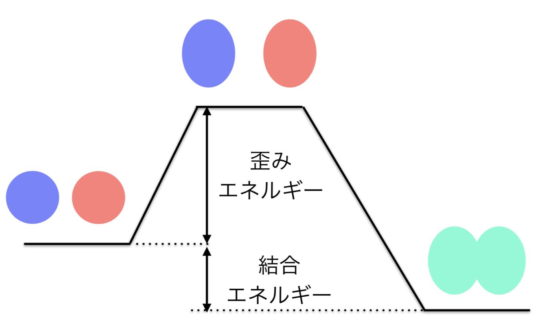 DistInt model
